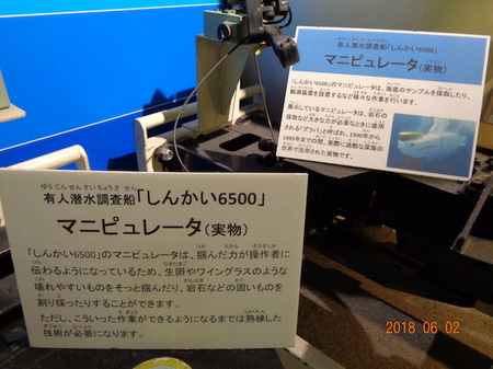 099エキスポセンター10.JPG