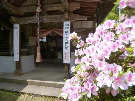 1008南蔵院1.JPG
