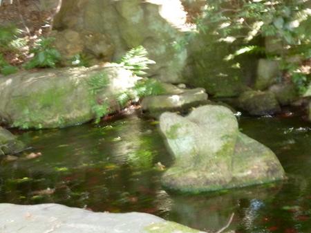 1014栗林公園5.JPG