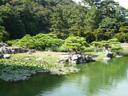 1026栗林公園2.JPG