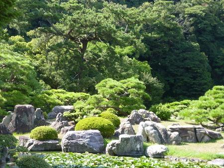 1026栗林公園3.JPG