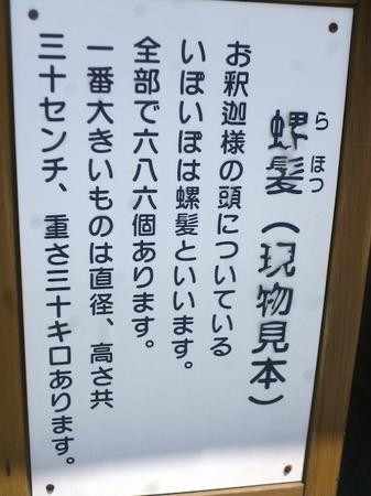 1028南蔵院16.JPG