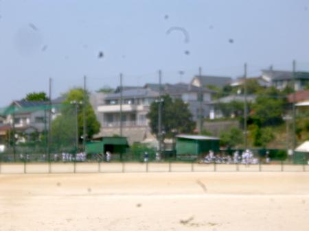 1048南蔵院・香椎宮15.JPG