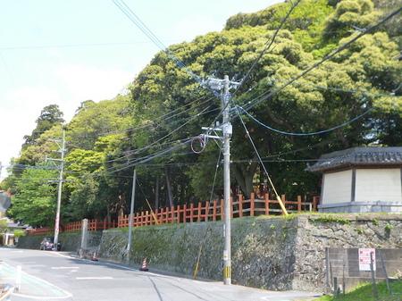 1048南蔵院・香椎宮16.JPG
