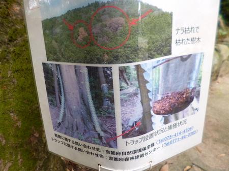 168石清水八幡宮8.JPG