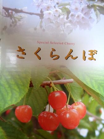 180619さくらんぼ月山錦1.JPG