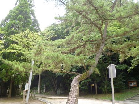 188石清水八幡宮21.JPG