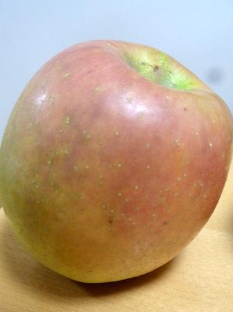 190130インドリンゴ2.JPG