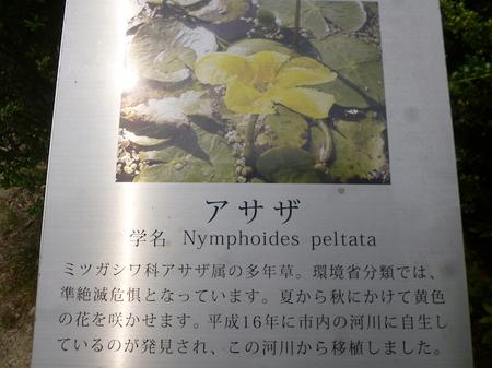 209石清水八幡宮5.JPG