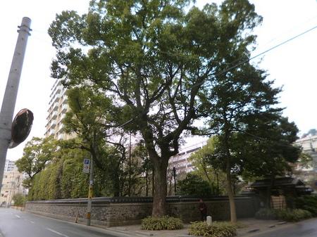212住吉神社2.JPG