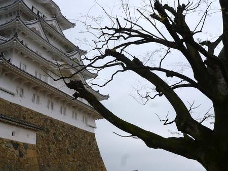 315姫路城5.JPG