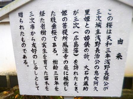 490花岳寺・赤穂城跡13.JPG