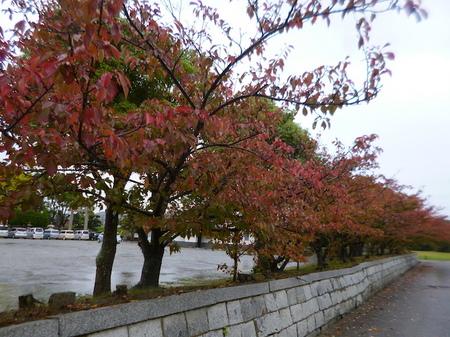 529大石神社・赤穂城跡8.JPG