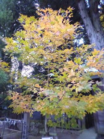 725二荒山神社22.JPG