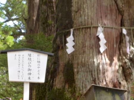 826二荒神社15.JPG