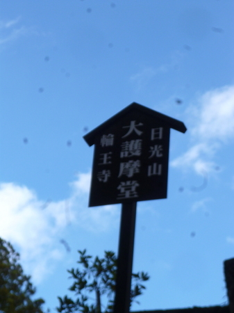 966日光4.JPG