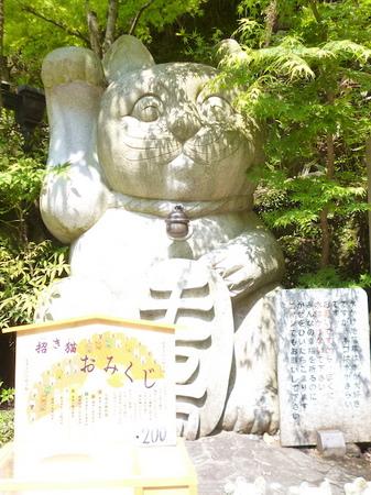 967南蔵院6.JPG